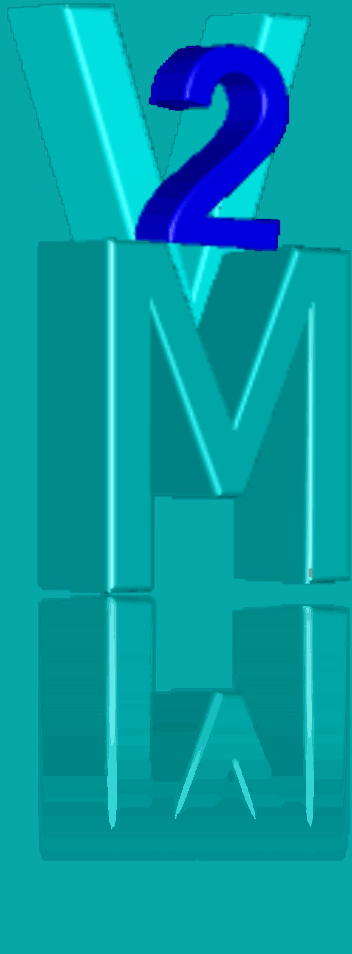 V2M Web Solutions
